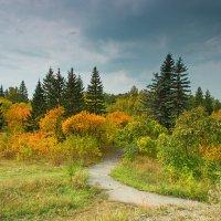 Осень в парке :: Дмитрий Иванцов