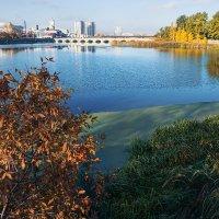 Осенний город :: Андрей Пашков