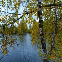 Просто осень ... :: Роман Царев