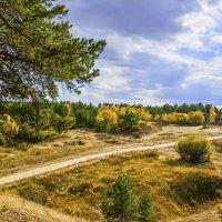 Осенняя пора :: юрий Амосов