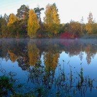 утренний туман :: Сергей Базылев
