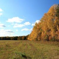 Осень :: александр пеньков