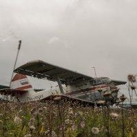 б/у авиация провинициального аэропорта :: Ларико Ильющенко