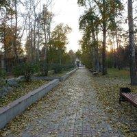 Осень :: Галина