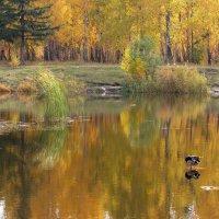 Акварельная Осень :: IRinA***