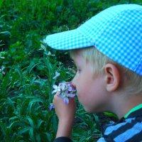 Мой сын :: Светлана Попова