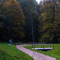 в лесу :: Anrijs Slišāns