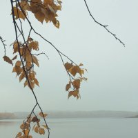 Вид на Северское водохранилище :: Epicaste Venorae