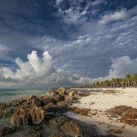 Карибы...Мексика. :: Александр Вивчарик