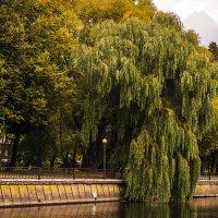 зелёный водопад :: juriy luskin