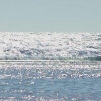 Серебро волны :: Виктор Коршунов