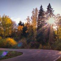 Солнечная осень :: Юрий Кольцов