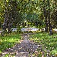 Старый городской парк :: Николай Николенко