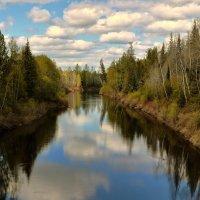 Вид с моста :: Sergey Emelyanov