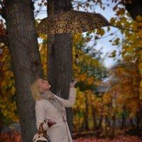 фокус покус зонтик лети :: Евгения Чернова