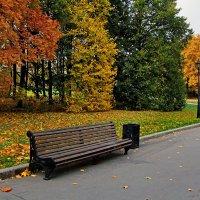 Осенний светофор... :: Nikanor