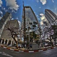 Тель Авив :: Shmual Hava Retro