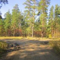Две дороги , два пути . :: Мила Бовкун