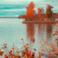Осень на озере... :: игорь козельцев