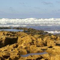 Океан в октябре :: Светлана marokkanka
