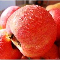Свежие яблочки :: Лидия (naum.lidiya)