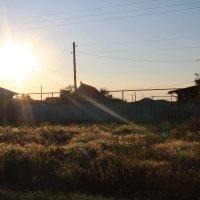 Деревня :: Мария Лебедева