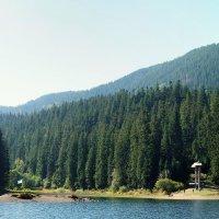 Озеро Синевыр в Карпатах :: Андрей Кто