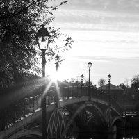 Не как в жизни... Моя чёрно-белая осень... :: Екатерина Маринина