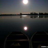 Луна над озером. :: Анатолий Борисов