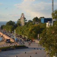 Владивосток :: Алёна Меженькова