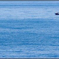 Рыбак :: Sergey Bagach