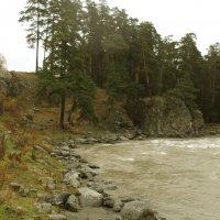 Осень, дождь и речка... :: Ольга Башарова