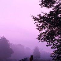 Туман.... :: Дарья Яковлева