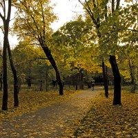 Осеннее одиночество......... :: Игорь Егоров