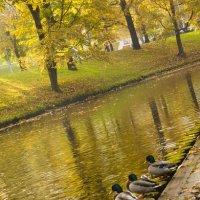 Осень :: Артём Исаев