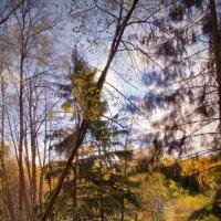 Осень :: Юрий Кольцов