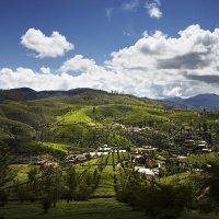 Шри Ланка-Высокогорье :: Игорь Терехин