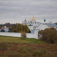 Покровский Монастырь. Суздаль :: Марина Напылова