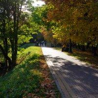 Минск Лошицкий парк :: Андрей Криштопенко
