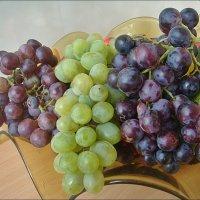 Разный виноград :: Нина Корешкова