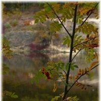 Осень... :: Татьяна Кретова