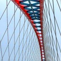 a new bridge across the Ob :: Дмитрий Карышев