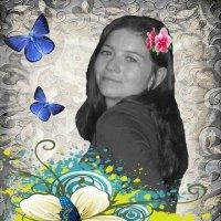 Бабочки :: Юлия Носовец