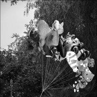 Андрей Макаров - На перерыве