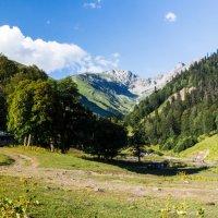 Панорама гор Абхазии :: Андрей Гриничев