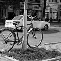 велосипед :: Игорь Попов
