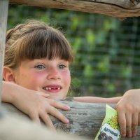 В зоопарке :: nataliya korchma