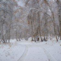 Снежный октябрь :: Сергей Брагин