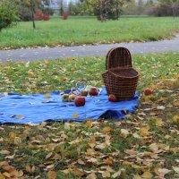 Осень :: Lena Suhanova