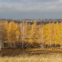 Поздняя осень 5. :: Kassen Kussulbaev